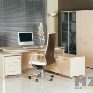 Компьютерный стол с тумбами и стеллаж для офиса