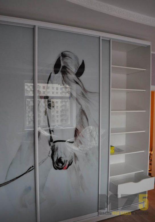 Современный белый шкаф-купе из лакобеля с фотопечатью