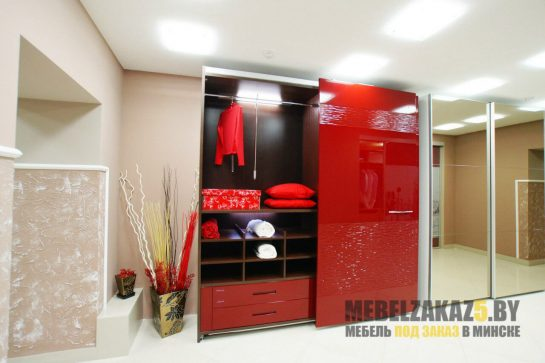 Шкаф-купе с 3д фасадами красного цвета