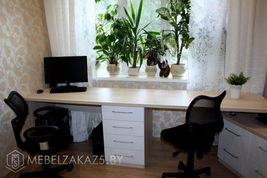Компьютерный стол на две персоны в комнату подростка