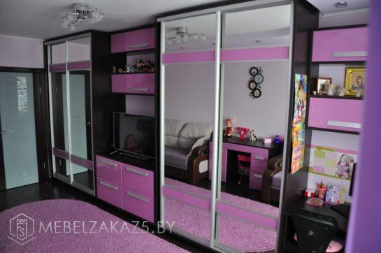 Двухстворчатый шкаф-купе в комнату для девочки-подростка